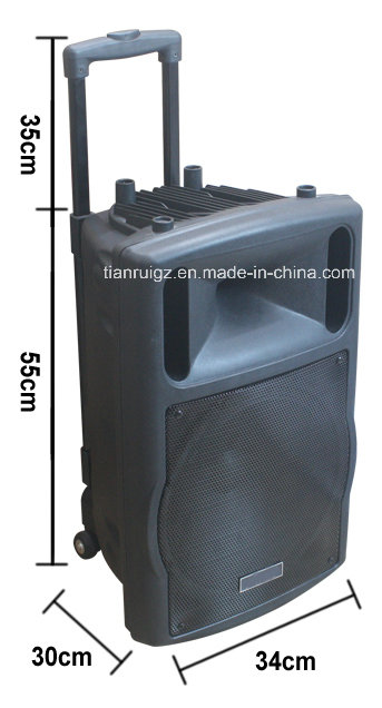 12 Inch Function Trolley Speaker with Mini Bluetooth Battery F78d