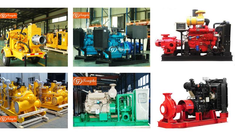 Diesel Engine Water Pump (set) for Irrigation