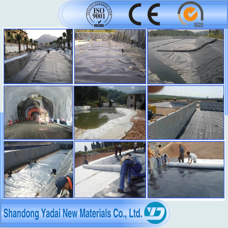 HDPE Geomembrane/HDPE Film Roll/HDPE Geomembrane Liner