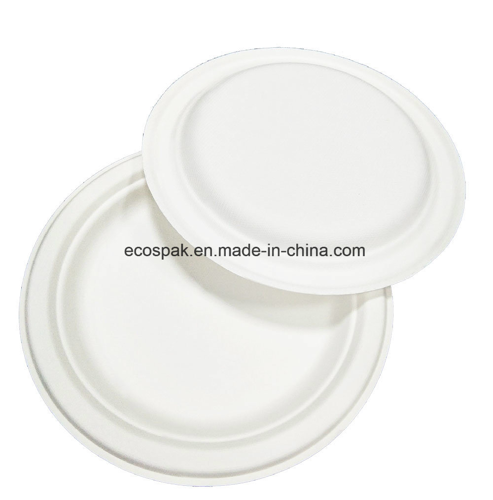 Eco Biodegradable Compostable Disposable Bagasse Paper Pulp Tableware 23cm Plate