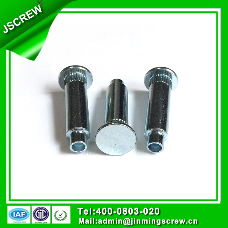 Screw Factory Manufacture M6 Screw Rivet