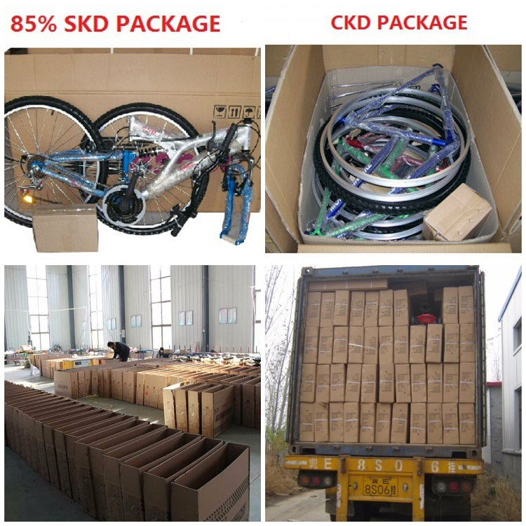 Factory Cheap Price Children Bike From China