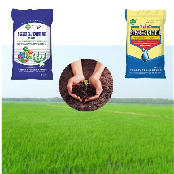 Bio Organic Fertilizer from Seaweed Extract (Base Fertilizer)