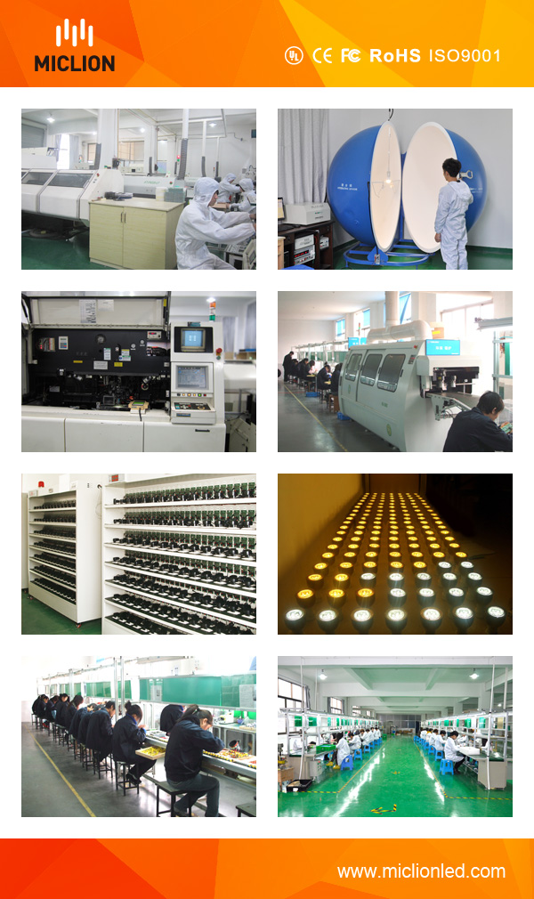 12W LED Emergency Lamp with Ce RoHS