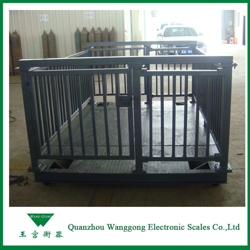 Scs-1ton Electronic Weighing Scale for Animal Weight
