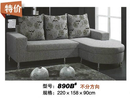 Big Sales Small Dimension Modern Fabric Sofa (890B)