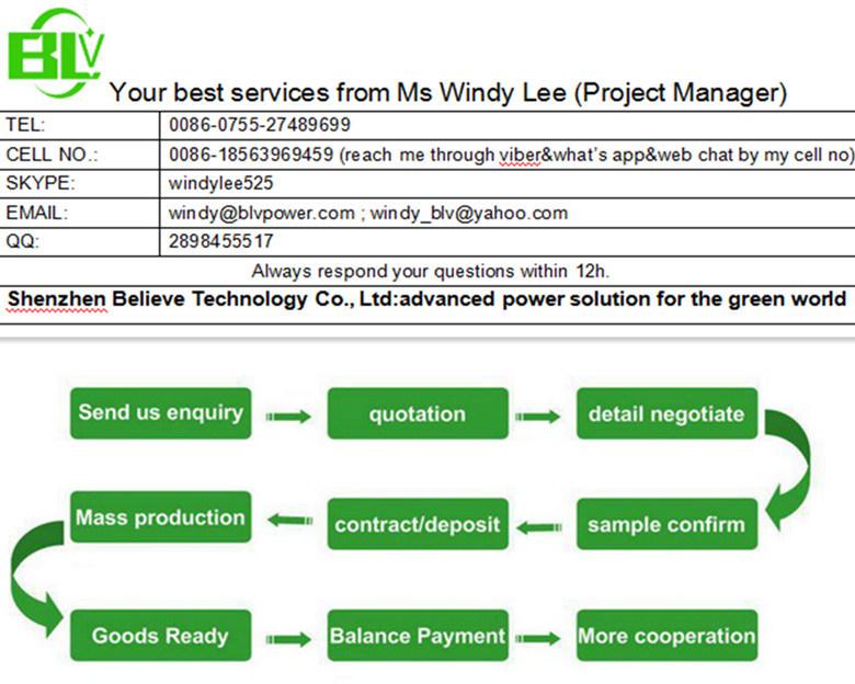 12V 30ah Li-ion Battery Pack Battery Pack for Solar Street Light From OEM Chinese Factory