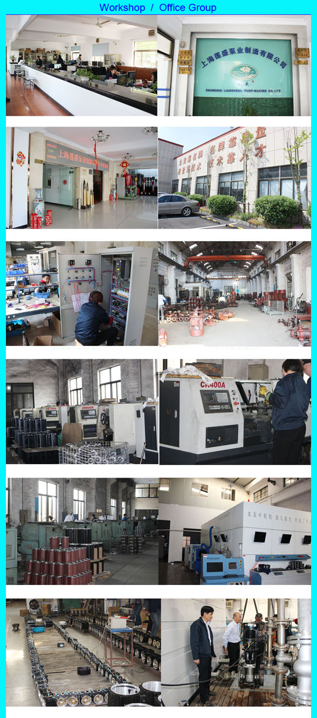 Boiler System Water Conveying Pump