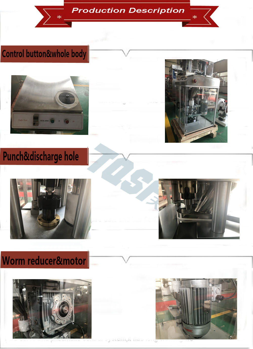 Dp-12 Laboratory Tablet Press Machine with High Quality