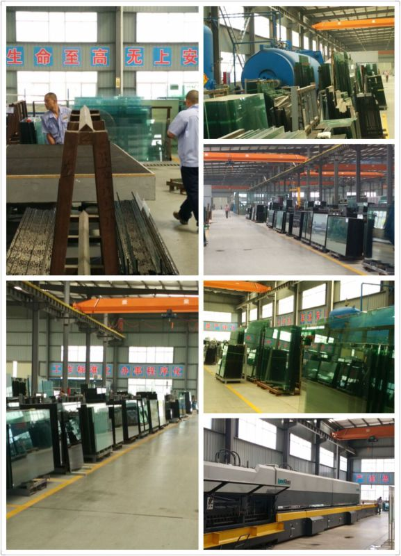 Wide Span Steel Frame Prefab Curtain Wall for Office/Mall Building