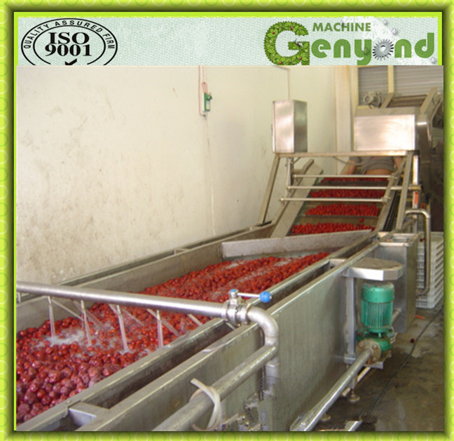 Full Stainless Steel Fruit Washing Machine