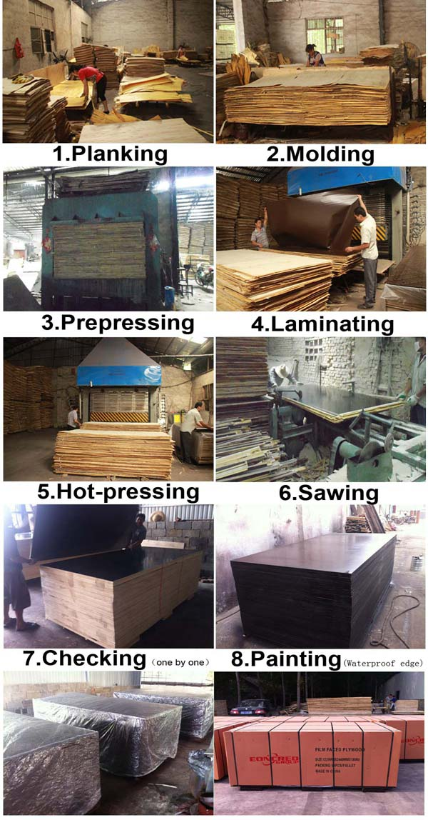 1220*2440mm 1250*2500mm Film Faced Marine Plywood Shuttering Plywood