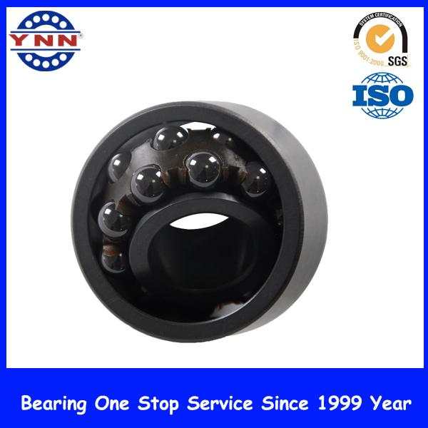 Black Si3n4 Double Row Deep Groove Ball Bearing (CE 2202 2RS)