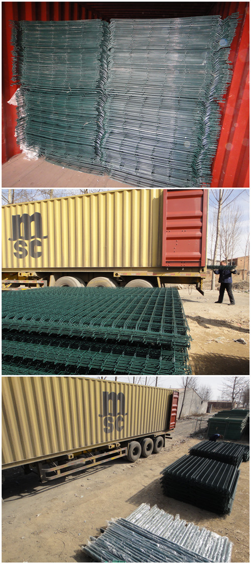 Reliable China Wholesale Metal Steel Wire Mesh Fence (WWMF)