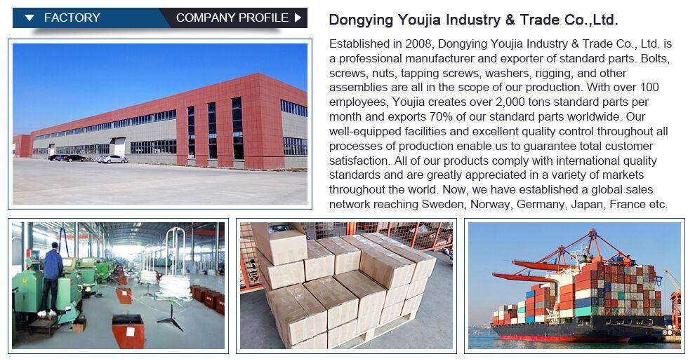 China Supplier Coupling Bolt and Nut