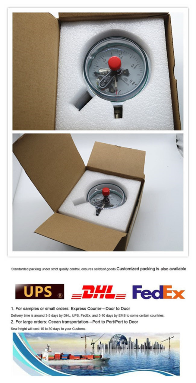 China Factory Price Differential Teletransmission Pressure Gauge