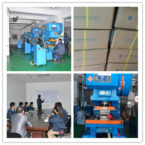 Ring Type Metal Stamping Press Electric Wire End Terminal (HS-DZ-0093)