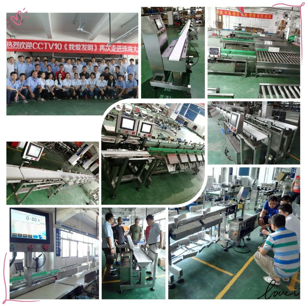 Conveyor Belt Weight Grading Equipment and Weight Sorter