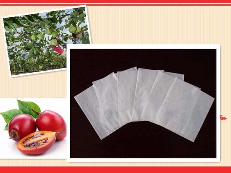 330X430mm White Glazed Apery Micropore Paper Grape Paper Bags with Outlet Entrance Popular in South America
