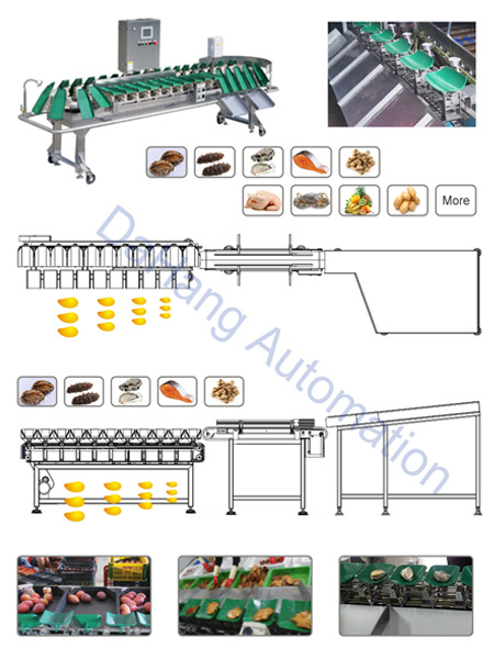 Potato/Tomato/Elaborated Weight Sorting Machine