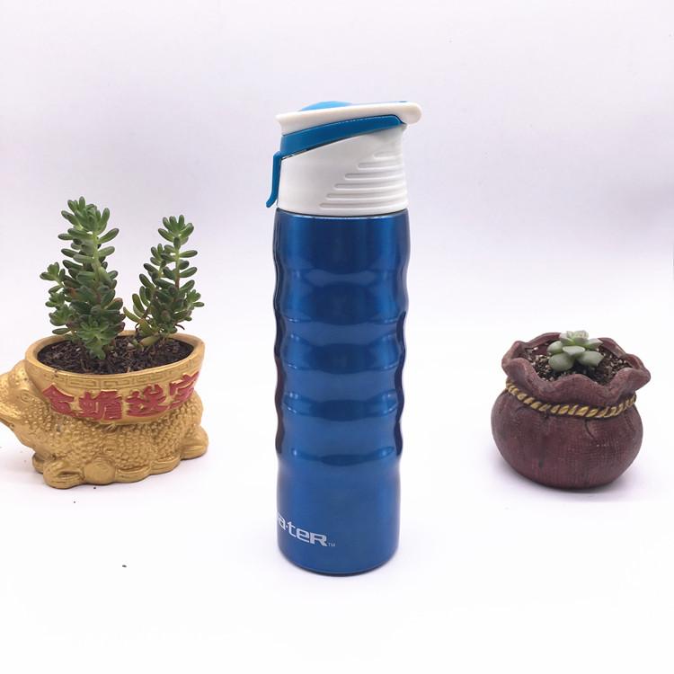 Stainless Steel Bottles, Water Bottle, Sports Bottle (SH-ST08)