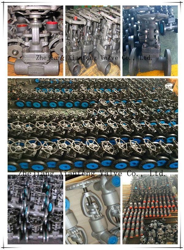 800lb/1500lb Forged Steel A105 Thread End NPT Globe Valve