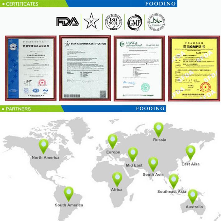 Nootropil Piracetam Powder Nootropics Drug Brain Improve 7491-74-9