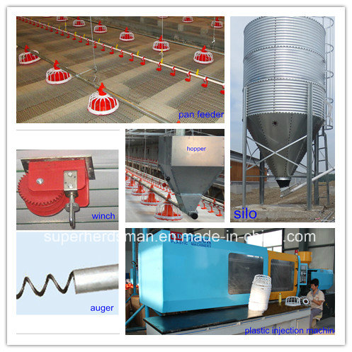 Automatic Feeding Line for Broiler Chicken