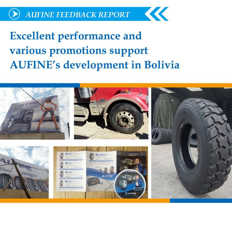 Mechelin-Technology Truck Tyre with Hot Selling