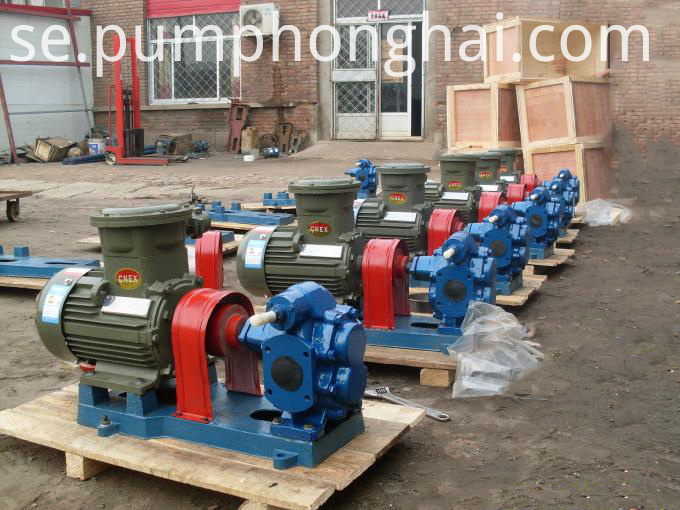 Small Food Grade Oil Pumps