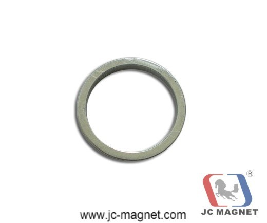 Rare Earth Sintered Ring NdFeB Magnet