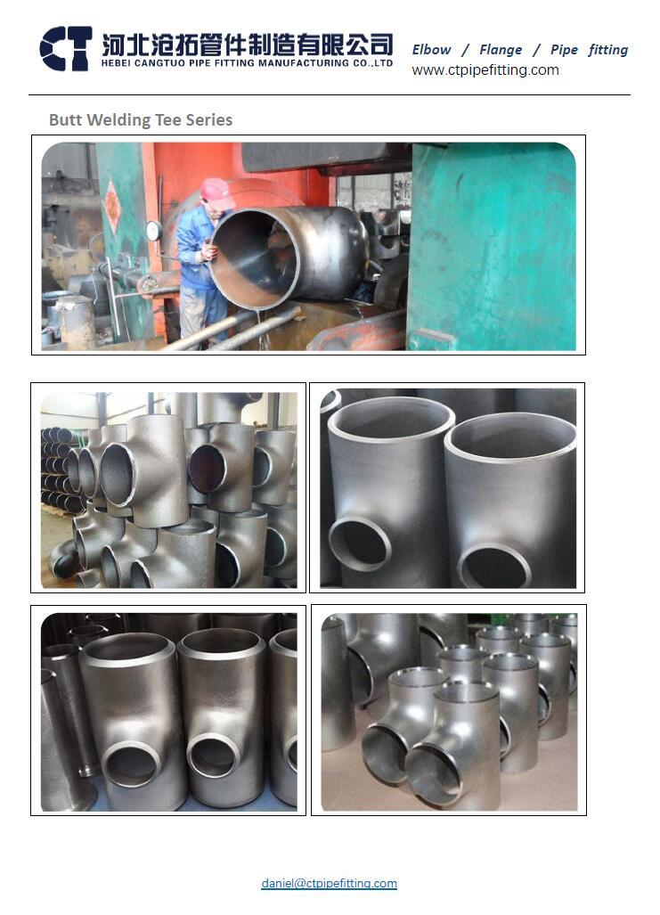 Mild / Carbon Steel /Ms/CS A234wpb Butt Weld Pipe Fitting and Elbow (reducer 4