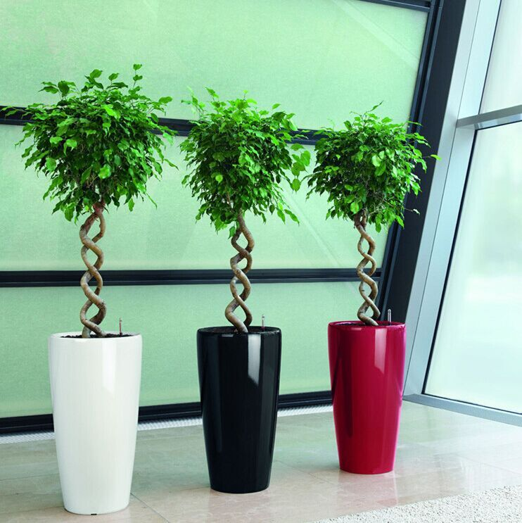 (BC-F1023) Plastic Decoration Fashionable Self-Watering Flower Pot