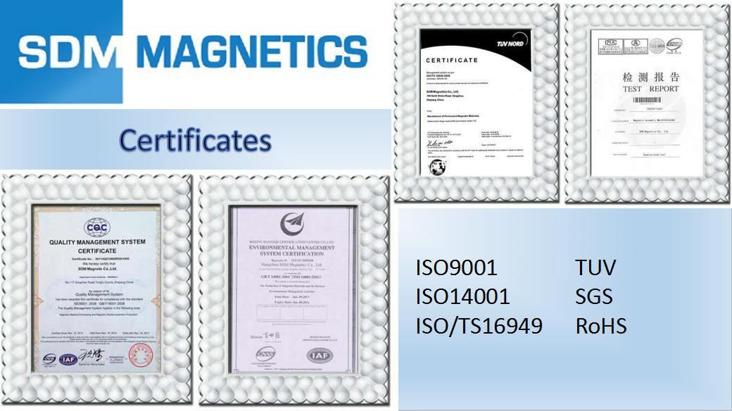 14 Years Experienced ISO/Ts 16949 Certificated Neodymium Synchronous Motor Magnet