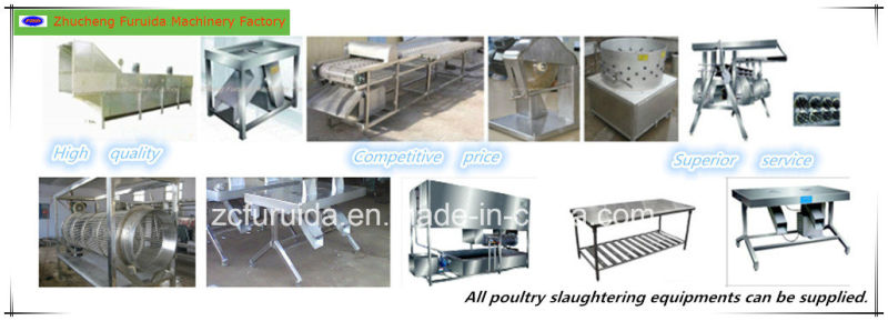 Poultry Cage Cleaning Machine for Slaughtering Line