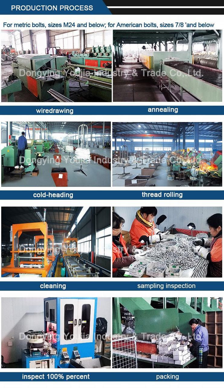 Factory Directly Sale Carbon Steel T Head Bolt