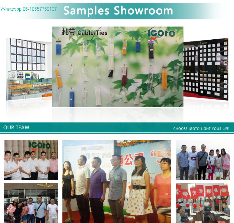 China Supplier Self-Locking Plastic Nylon Strap