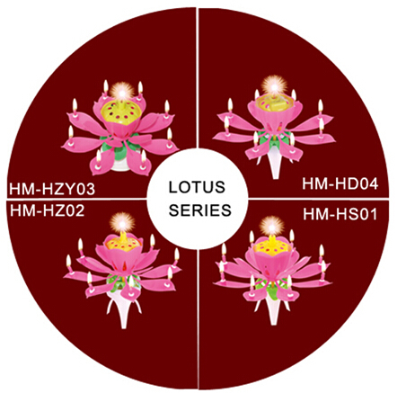 Four lotus flower