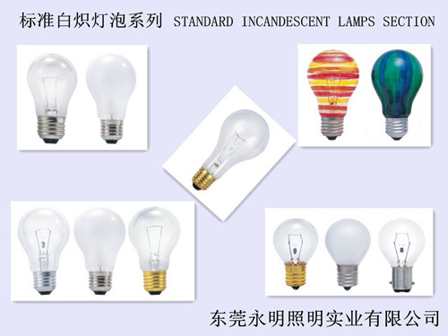 G45 Ball Shape Bulb Incandescent Bulb