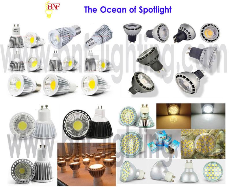 High Power LED PAR30 Spot Light with 5W/7W Lamp