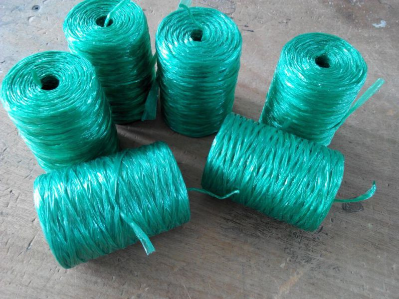 5mm Eco-Friend and UV Treated Plastic Rope (SGS)