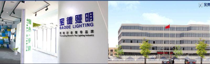Round/Polygonal Q235 Steel 6/8/11m Street Lighting Pole (BDP-LD1s0)