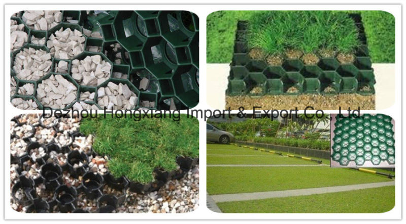 High Quality Plastic Grass Grid Pavers with HDPE Material