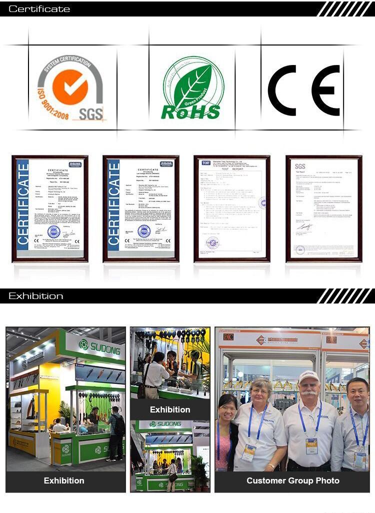 certificate Exhibition.jpg