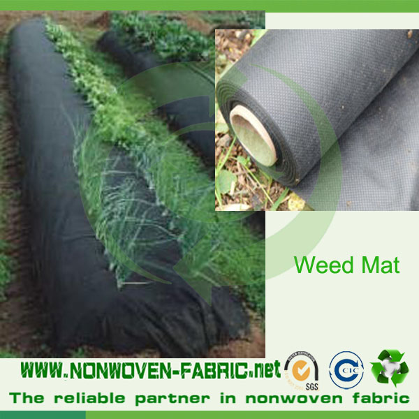 Favorable Anti-UV Nonwoven Fabric for Cover Crops