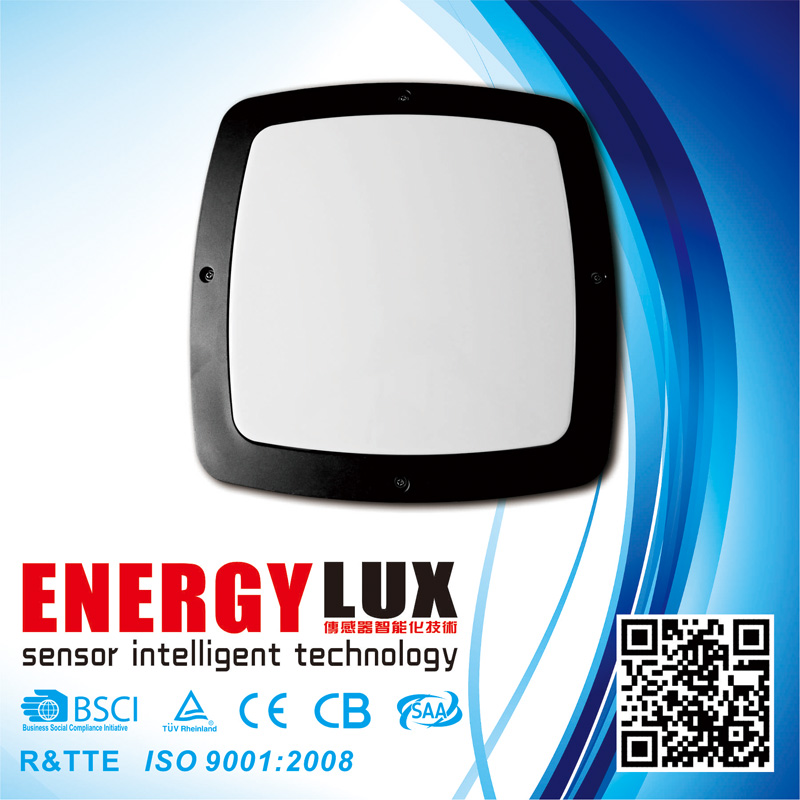 E-L01A Aluminium Die-Casting Body E27 Outdoor Ceiling Light
