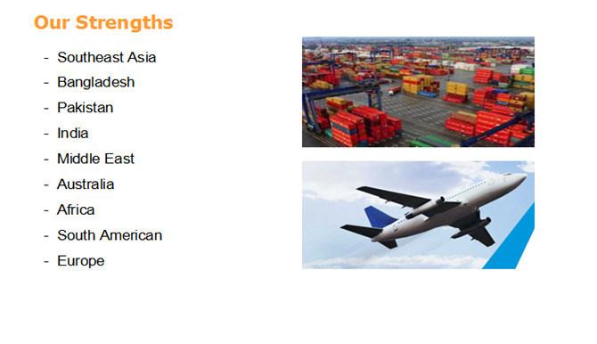 Shipping Sea Cargos From Shenzhen/Shanghai/Guangzhou/Xiamen to India