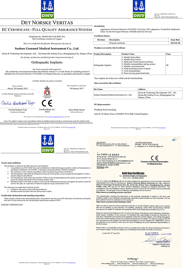 Pfn Nail Proximal Femoral Nail Intramedullary Nail in Femur Ce Approved