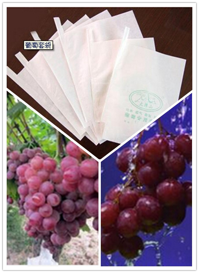 280X370mm Glazed Apery Paper Grape Protection Bag Cheap Price with Micropore to Regulate Fruits Mature Periods