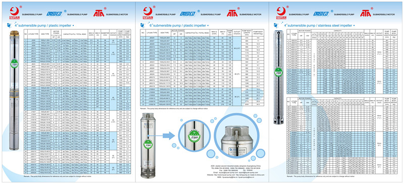 4 Inch and 6 Inch Submersible Pump and Motor